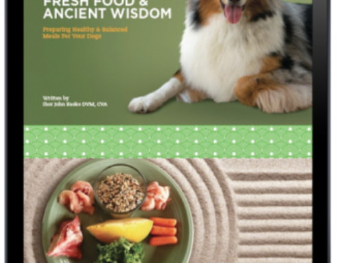 Fresh food ancient wisdom book dr basko holistic veterinarian fresh food ancient wisdom digital forumfinder Images