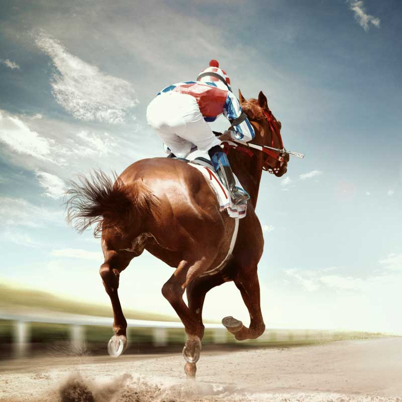The Good Bad And Ugly Of Horse Racing