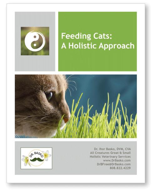 FEEDING CATS: A HOLISTIC APPROACH (DIGITAL)